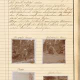Am 4. Juli 1929 wütet der große Sturm, der nachhaltigen Schaden an  Sachwerten und Natur angerichtet hat.